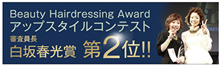2013Beauty Hair dressing Award